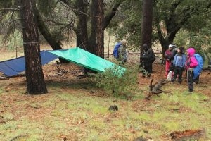 Tarp Tent shelter, backpackers